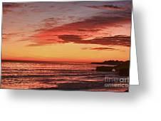 hd 330 Dog Beach 1 HDR Greeting Card by Chris Berry