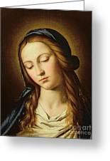 Head Of The Madonna Greeting Card by Il Sassoferrato
