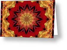 Healing Mandala 28 Greeting Card by Bell And Todd