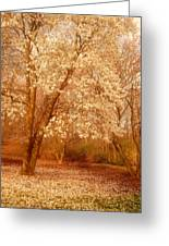 Hear The Silence - Holmdel Park Greeting Card by Angie Tirado-McKenzie