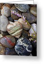 Heart Stone With Wild Flower Greeting Card by Garry Gay