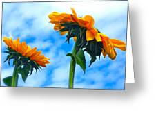 Heaven Above ... Greeting Card by Gwyn Newcombe
