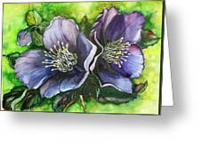 Helleborous Blue Lady Greeting Card by Karin  Dawn Kelshall- Best
