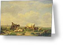 Herdsman And Herd Greeting Card by Eugene Joseph Verboeckhoven