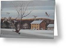 Hezakiah Alexander House  Greeting Card by Charles Roy Smith