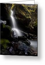 Hidden Falls Greeting Card by Mike  Dawson
