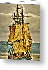 Hms Bounty Greeting Card by David Patterson