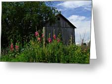 Hollyhock Barn Greeting Card by Michael L Kimble