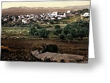 Holy Land - Jenin Greeting Card by Munir Alawi