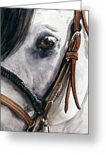 Horse Head Greeting Card by Nadi Spencer