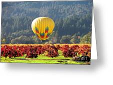 Hot Air In The Valley Greeting Card by Gail Salituri