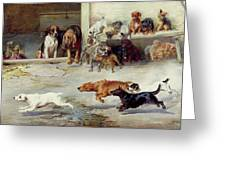 Hot Pursuit Greeting Card by William Henry Hamilton Trood