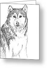Husky Greeting Card by Charme Curtin