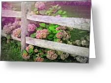 Hydrangeas Greeting Card by JAMART Photography