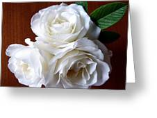 Iceberg Rose Trio Greeting Card by Will Borden