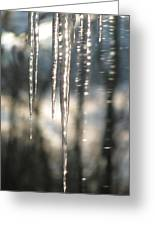 Icicle Art Fun 13 Greeting Card by Debra     Vatalaro