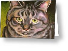 Im Your Man Tabby Greeting Card by Susan A Becker