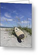 In The Dunes Greeting Card by Benanne Stiens