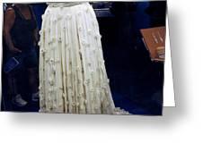 Inaugural gown on display Greeting Card by LeeAnn McLaneGoetz McLaneGoetzStudioLLCcom
