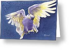 Incoming Greeting Card by Marsha Elliott
