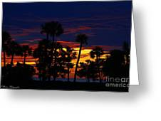 Indigo Sunset Greeting Card by Barbara Bowen