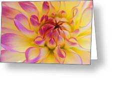 Inner Beauty Greeting Card by Kathy Yates