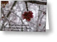Inspirations 11 Greeting Card by Sara  Raber