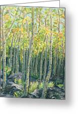 Into The Aspens Greeting Card by Mary Benke