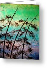 Into The Wind Greeting Card by Rick Silas