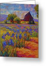 Iris Field Greeting Card by Marion Rose