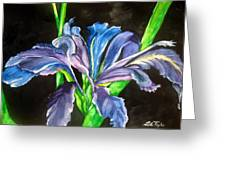 Iris Greeting Card by Lil Taylor