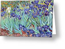 Irises Greeting Card by PG REPRODUCTIONS