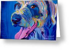 Irish Terrier - Lizzy Greeting Card by Alicia VanNoy Call