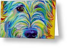 Irish Wolfhound - Angus Greeting Card by Alicia VanNoy Call