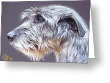 Irish Wolfhound  2 Greeting Card by Elena Kolotusha