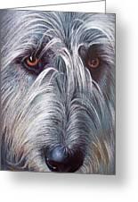 Irish Wolfhound Greeting Card by Elena Kolotusha