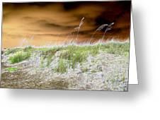 Island Dune Greeting Card by Peter  McIntosh