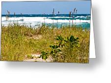 Its A Shore Bet Greeting Card by Michelle Wiarda
