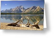 Jackson Lake 3 Greeting Card by Marty Koch
