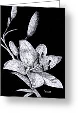 Jacqui's Lily Greeting Card by Linda Hiller