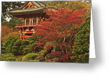 Japanese Tea Garden In Golden Gate Park Greeting Card by Stuart Westmorland
