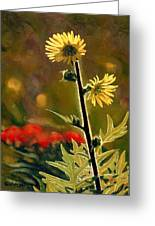 July Afternoon-compass Plant Greeting Card by Bruce Morrison