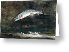 Jumping Trout Greeting Card by Winslow Homer