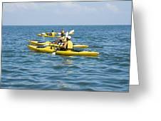 Kayak Trip Greeting Card by Stacey Lynn Payne