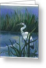 Keeper Of The Pond II Greeting Card by Shirley Lawing