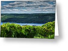 Keuka Vineyard I Greeting Card by Steven Ainsworth