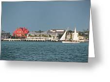 Key West Shoreline Greeting Card by Frank Mari
