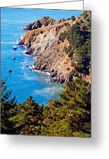 Kirby Cove San Francisco Bay California Greeting Card by Utah Images