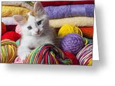 Kitten in yarn Greeting Card by Garry Gay