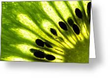 Kiwi Greeting Card by Gert Lavsen